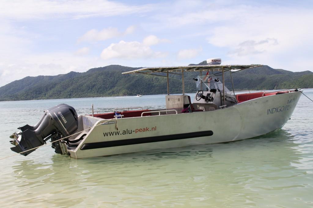 Custom Build 950 Offshore